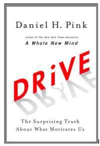 Daniel H. Pink / Drive